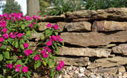 weathered fieldstone wallstone landscape stone by semco stone